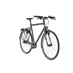 vsf fahrradmanufaktur T-700 Trekkingsykkel Diamant Alfine 11-Gang Svart